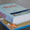 beach-book-by-elisha-cooper-cake-sweet-cheeks-baking-800x505