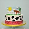 farm-cake-for-jackson