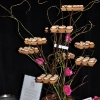 enticing-tables-tree-branch-display-web