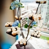 cupcakes-enticing-tables-branches-photo-by-true-photography