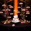 enticing-tables-cupcake-branch-stand-scottamanda721