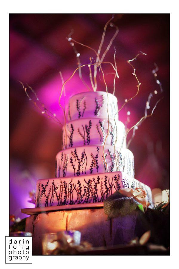 Darin Fong Photo, Hotel Del Coronado Branch cake