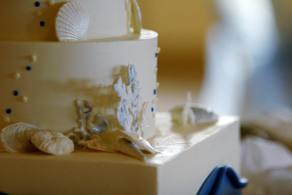 bella-pictures-beach-theme-cake