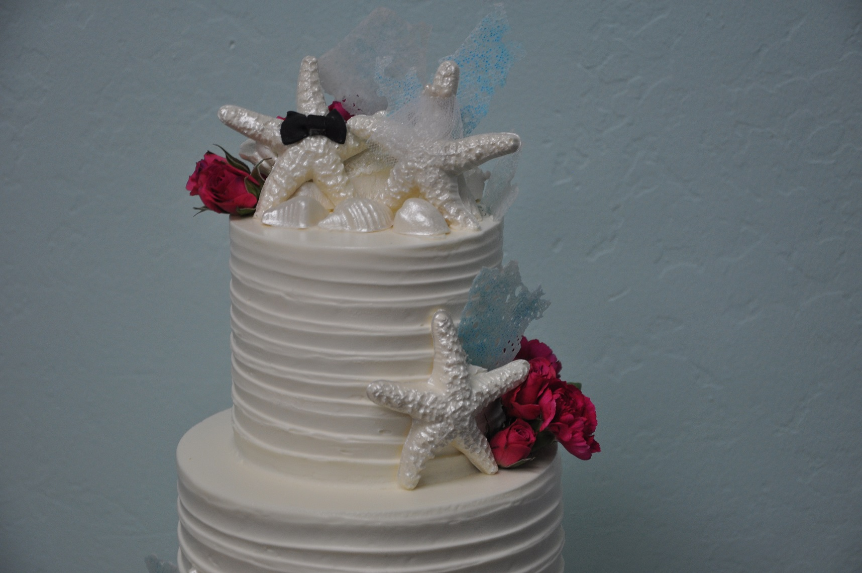 horizontal-texture-with-touch-of-beach-wedding-cake-1