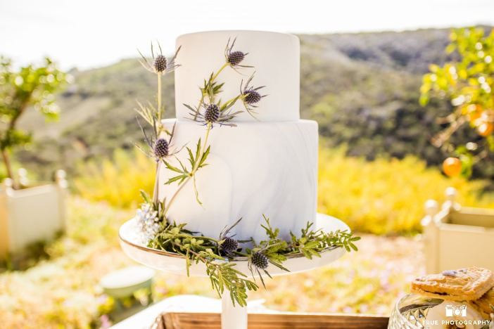 marbled-watercolor-wedding-cake-with-thistle-sweet-cheeks-at-cal-a-vie-spa-retreat-true-photography