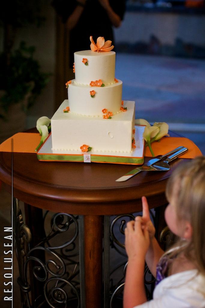 resolusean photography-wedding-fingers