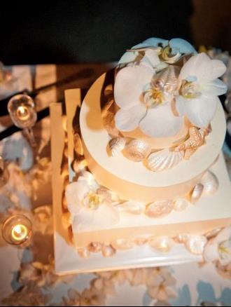 shell-cake-sweet-cheeks-baking-katie-mckenna