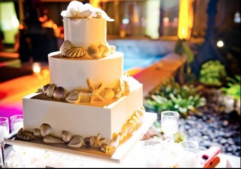 shell-cake-sweet-cheeks-baking-naturals-for-katie-mckenna