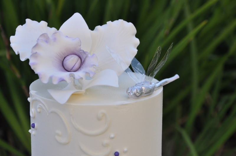 silver-dragonfly-cake-with-purple-accents-2-800x531