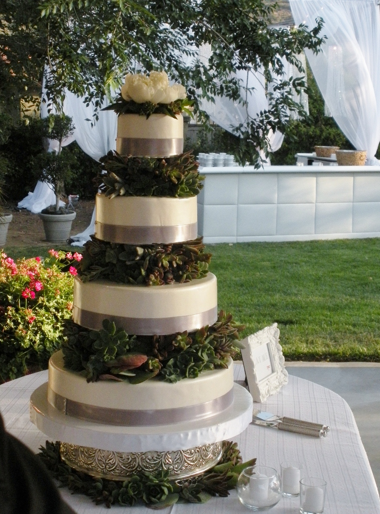 succulents-tiered-cake