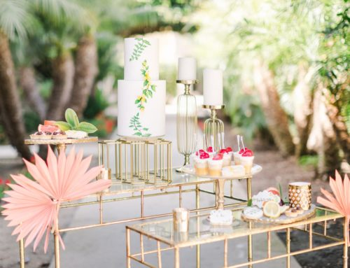 Sweet Cheeks' Estancia Photoshoot is Featured on 100 Layer Cake!